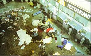 Terrorism Image